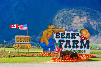 Bear's Farm, Kanada