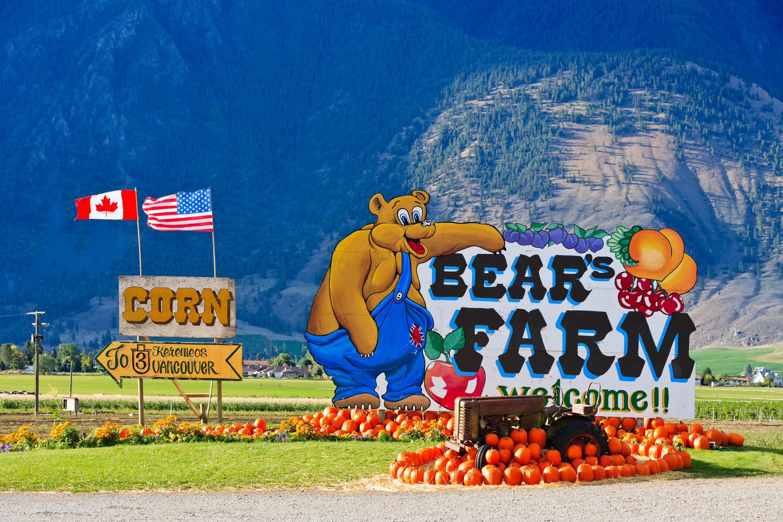 Bear's Farm, Kanada