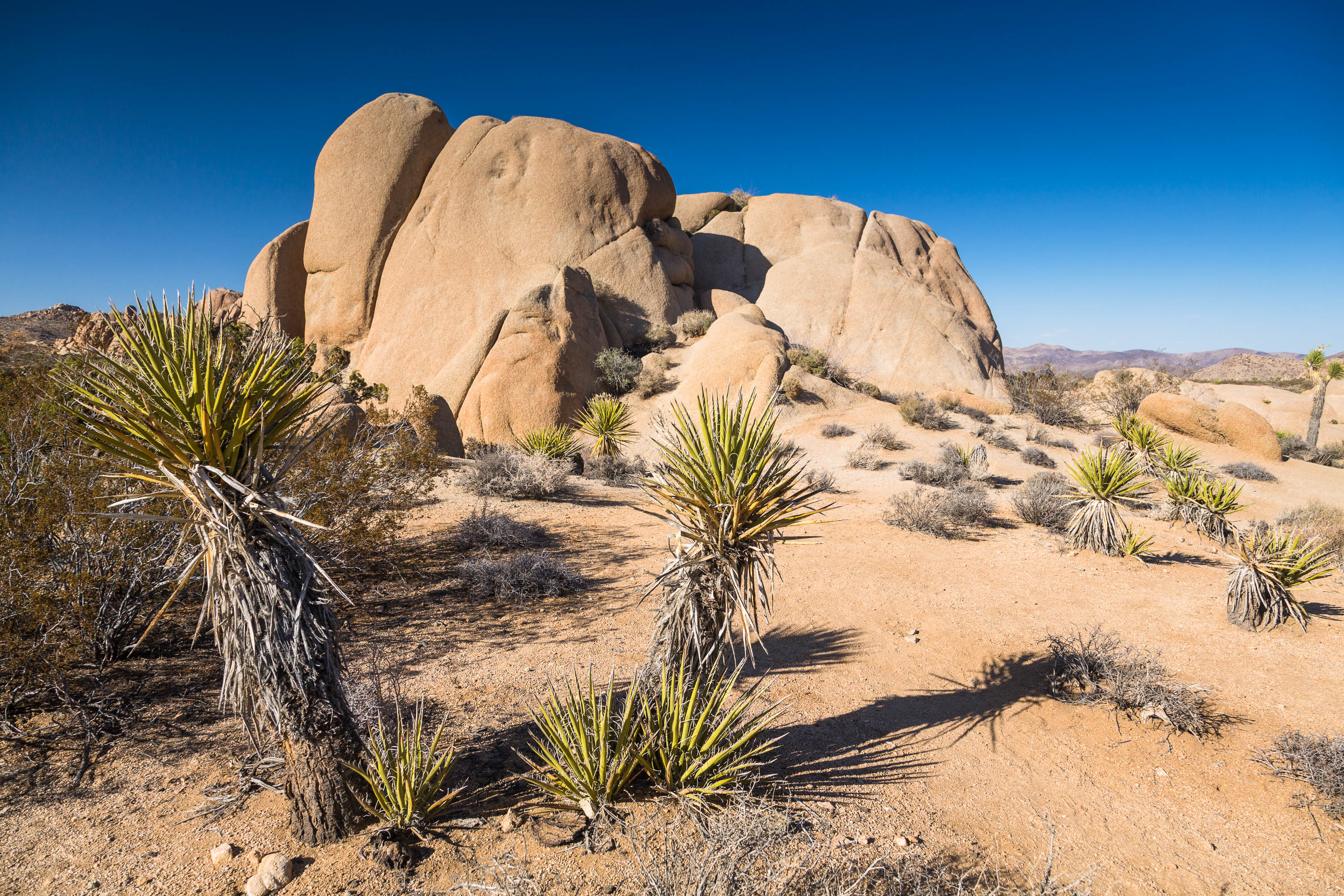 Felsen im Joshua Tree Nationalpark, Kalifornien